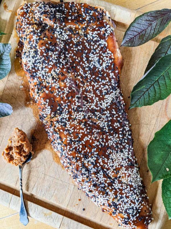 Image ofMiso Steelhead Trout or Salmon