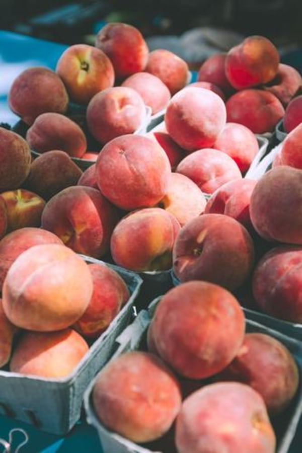 Image ofRecipe for Peach BBQ Sauce