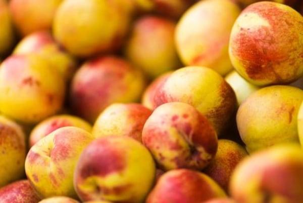 Image ofBaked Nectarines Recipe