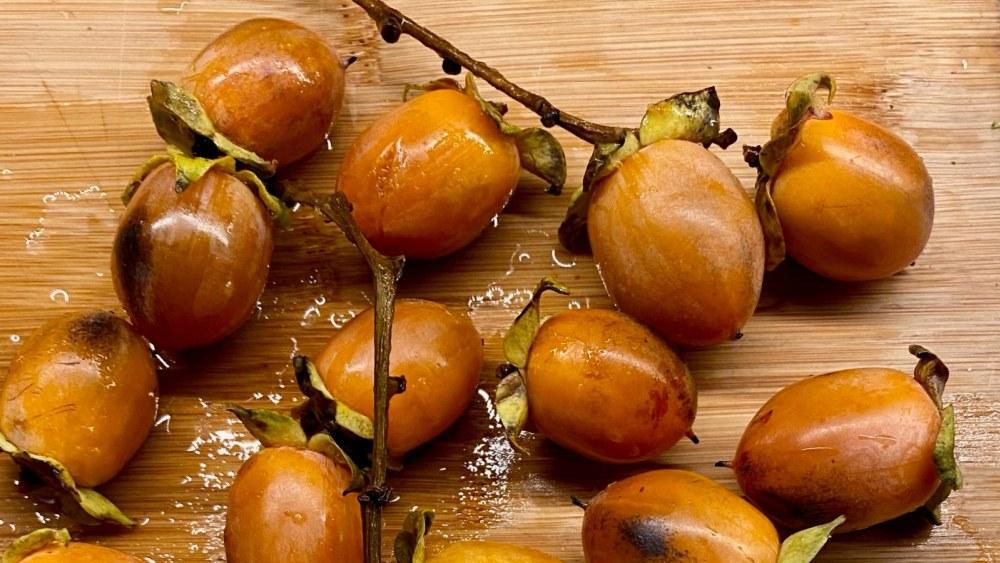Persimmon Wine | 酒酿柿子