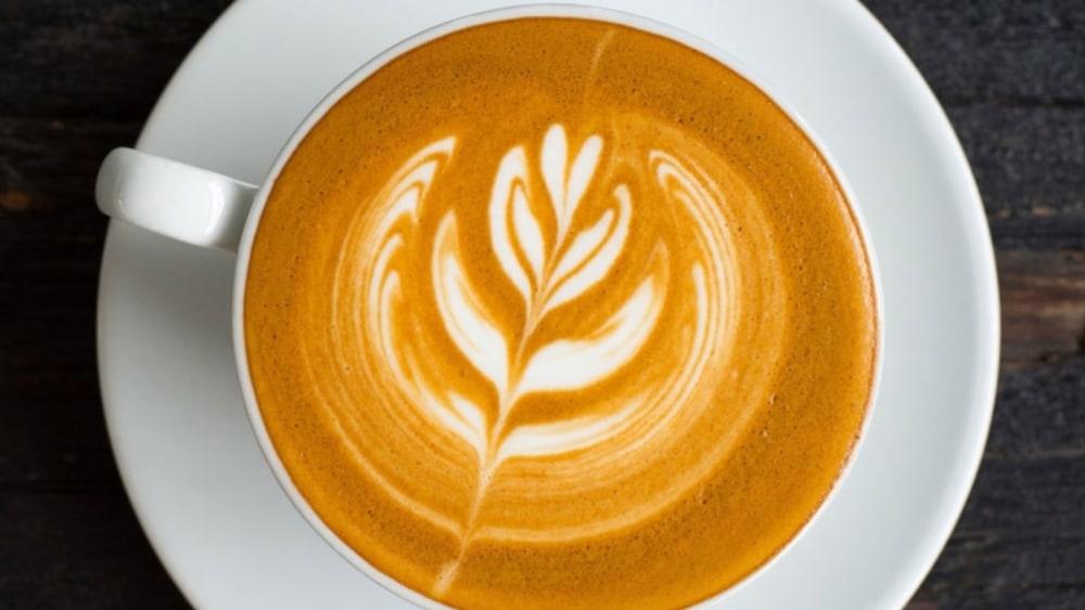 Extraordinario Latte de Turkey Tail