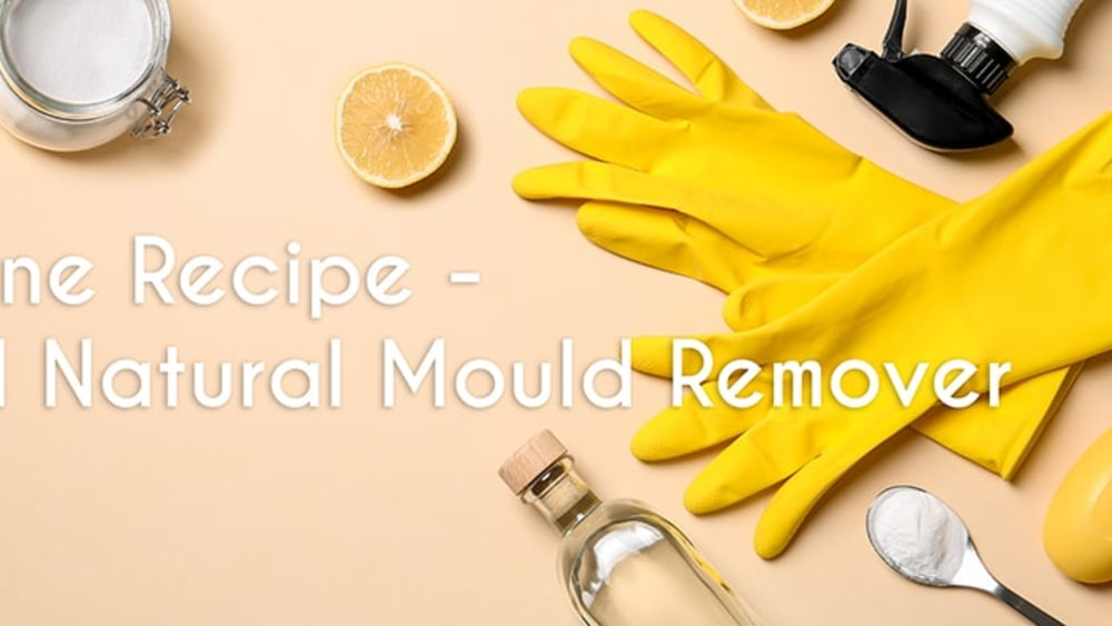 Image ofAll Natural DIY Mould Remover