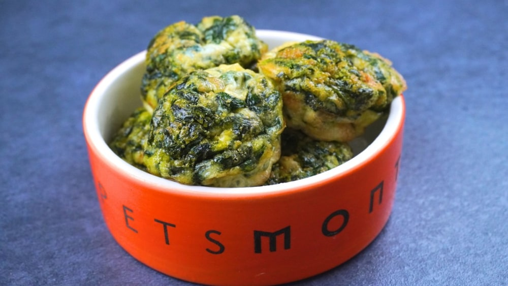 Image of DIY Simple K9 Spinach Frittata for Dogs Recipe