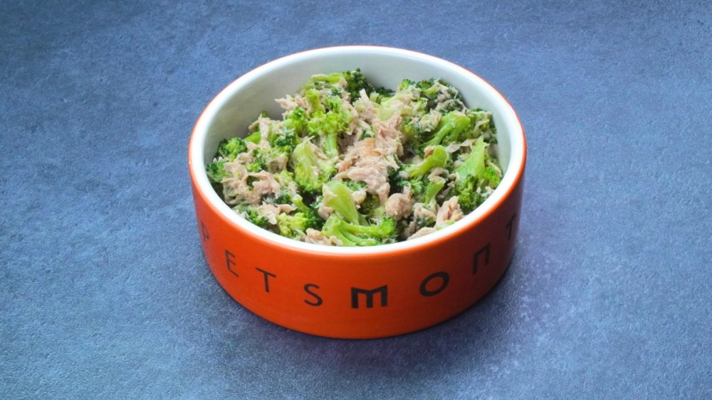 Image of DIY Kitty Tuna Salad Recipe