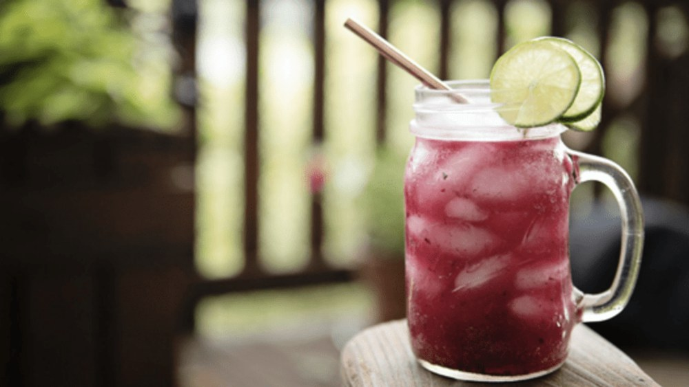 Image ofBlueberry Margarita Cocktail