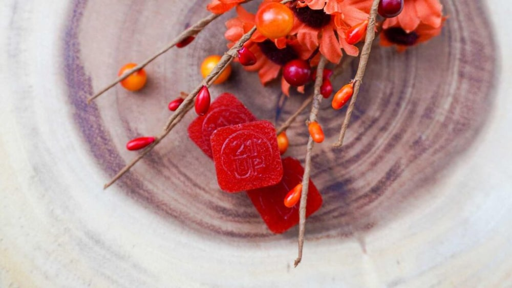 Image of Cranberry Dream Natural Gummies