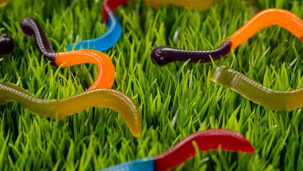 Image of Gummy Worms