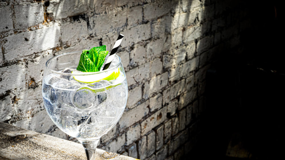 Image of Mediterranean Elderflower Gin and Tonic with Apple and Fresh Mint