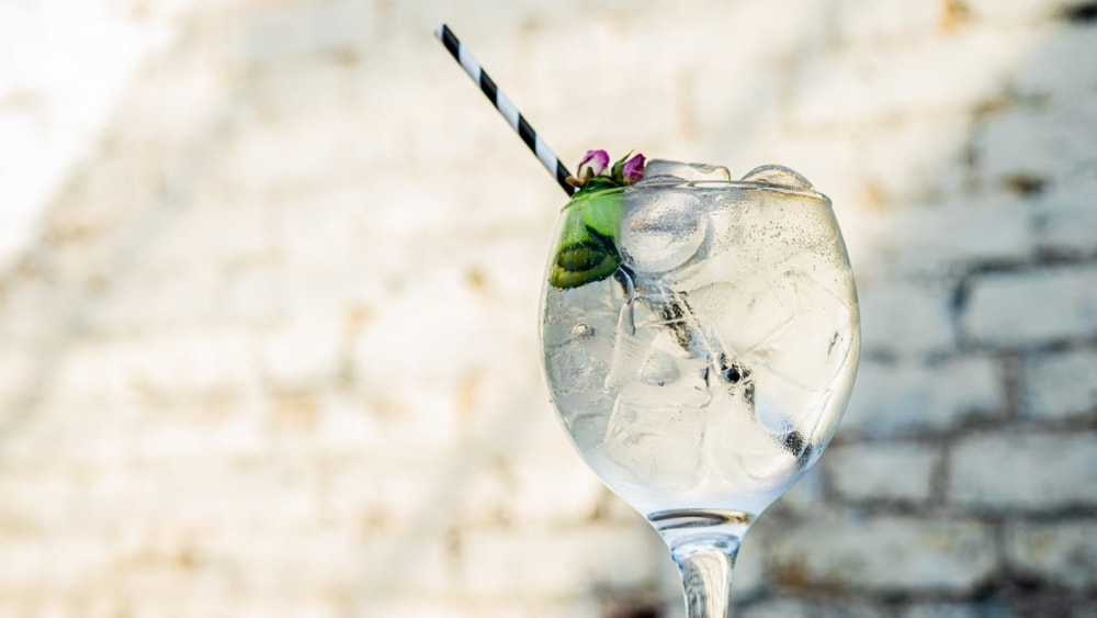 Image of Fresh and Crisp Cucumber Gin and Tonic