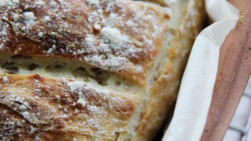 sourdough starter recipe