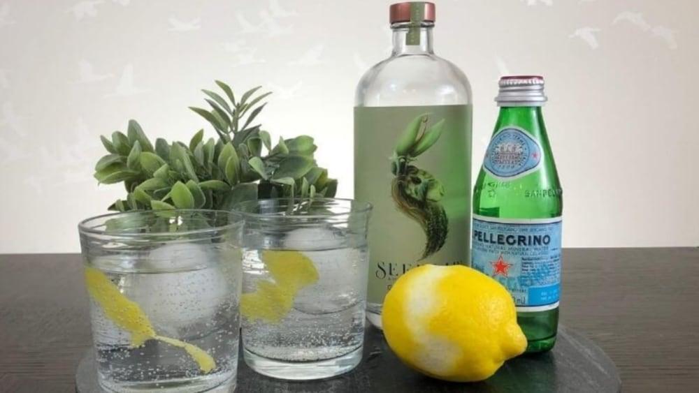 Image of Seedlip Garden 108 & Soda Non-Alcoholic Cocktail
