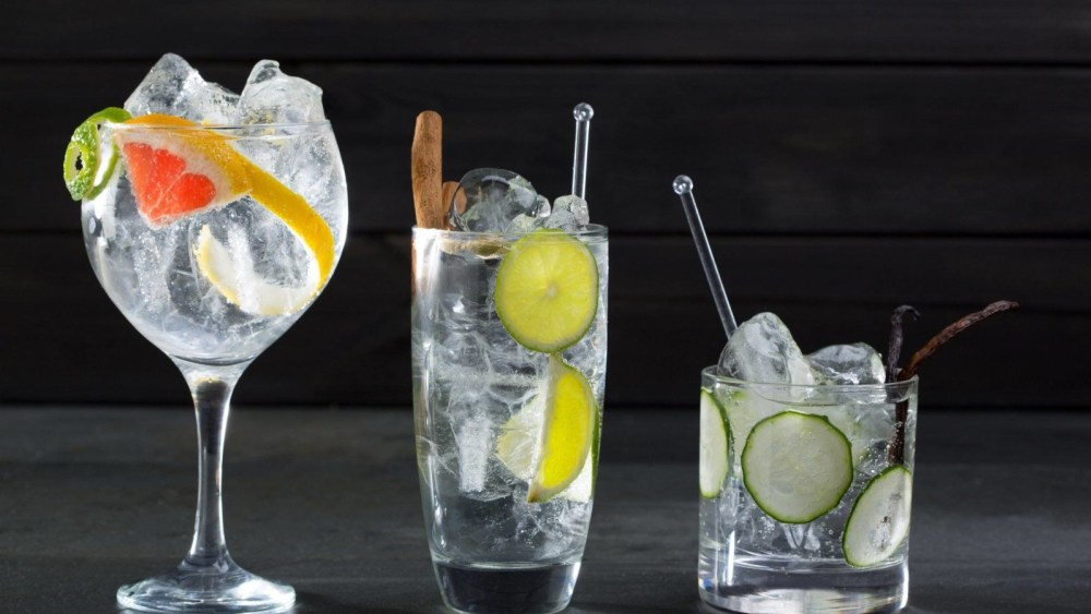 Image of Gin and Tonic Cocktail Recipe