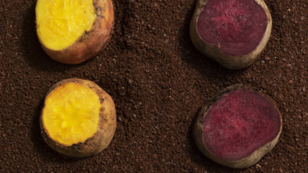 Image of Coffee Roasted Beets