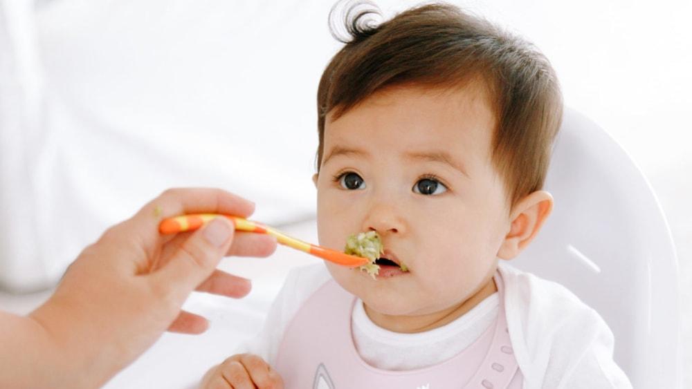 Image of Fish, Broccoli & Quinoa Puree