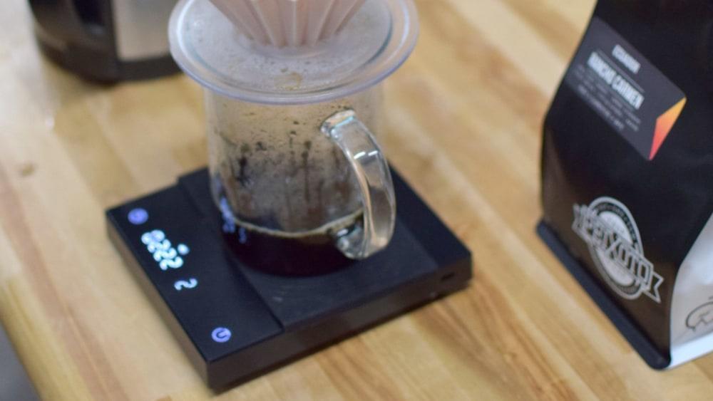 Image of Brewing a washed Ecuadorean Coffee with Julia Peixoto
