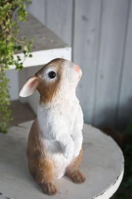 チアフルフレンズ ウサギのマリー 1体