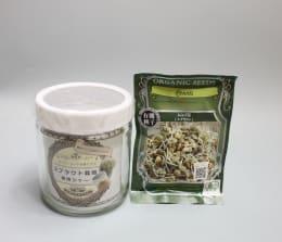 数日で収穫 有機種子レンズ豆 スプラウト専用ジャー付き(栽培3回分セット)
