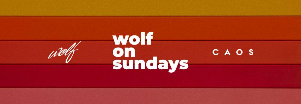 Wolf On Sundays 13.06