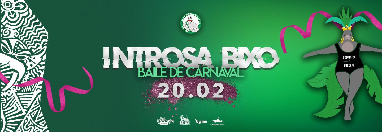 Introsa Bixo - Baile de Carnaval