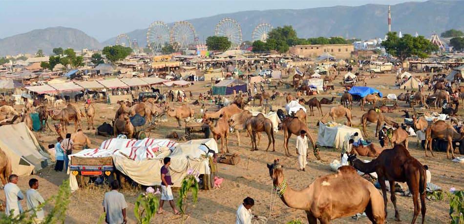 Pushkar, Rajasthan - Travel Photography Tour