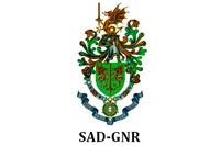 SAD-GNR image