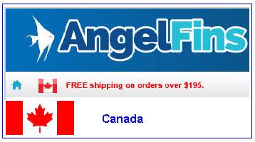 Canada Dealer