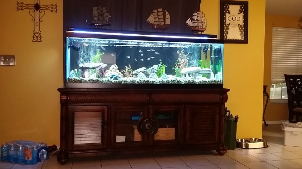 Garcias Aquarium
