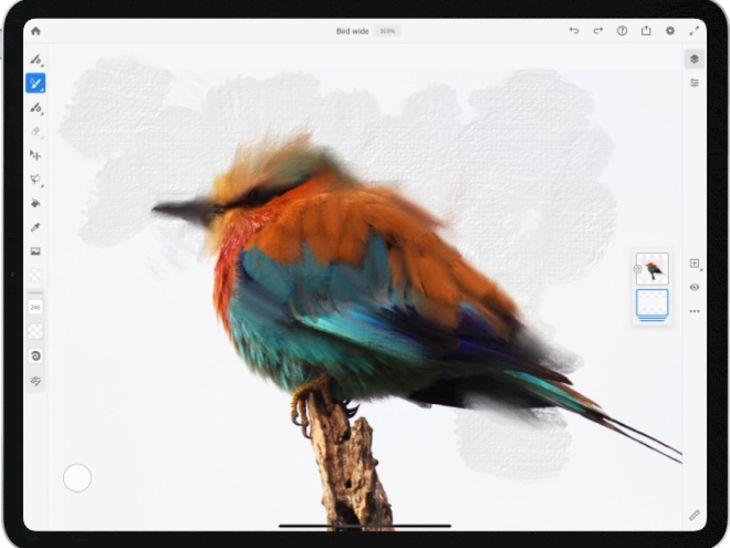 phần mềm của hãng Adobe