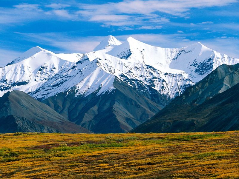 climbing_denali_national_park