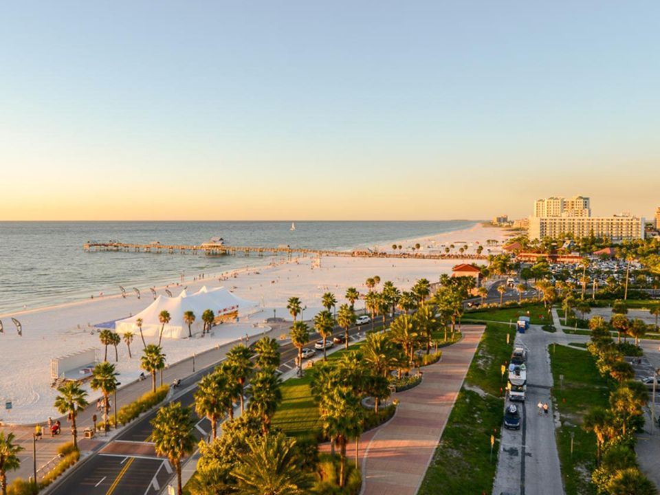 Tampa View