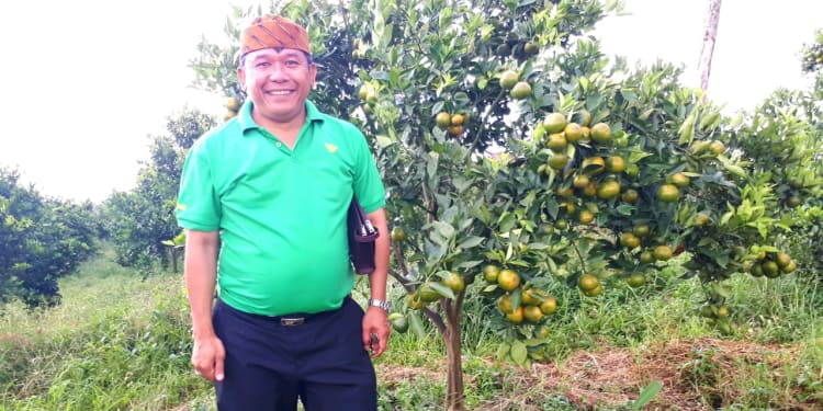 Tonny Saritua Purba (Penyuluh Swadaya Petani Padi Indonesia)