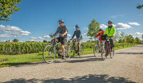 Bike Tours and Sightseeing from AmaReina