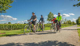 Onboard Bicycles aboard AmaSonata