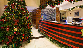 AmaWaterways Christmas Decorations