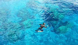 Snorkel in Papeete's clear waters