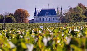 Azamara Club Cruises vineyard at Chateau Margaux