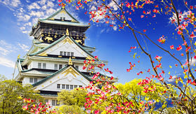 Celebrity Cruises beauitful view of Osaka Castle