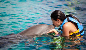 Celebrity Cruises girl kissing dolphin at dolphin interaction