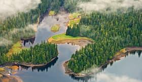 Celebrity Cruises Tongass Rainforest in Alaska