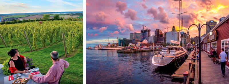 Vineyard and downtown Halifax, Nova Scotia