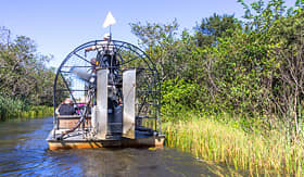 Holland America Line airboat tour in the Everglades Florida