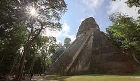 Holland America Line Mayan Pyramid in Tikal Guatemala