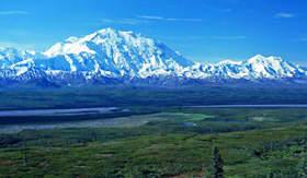 Holland America Line Mt McKinley