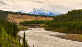 Holland America Line Nenana river in Denali Alaska