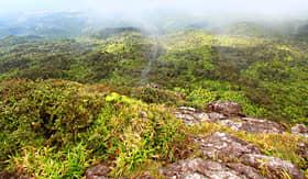 Holland America Line Puerto Rican landscape from El Yunque Peak