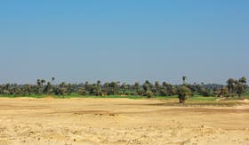 MSC Cruises african oasis in the desert in Sakkara