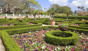 Norwegian Cruise Line Bermudas Botanical Gardens