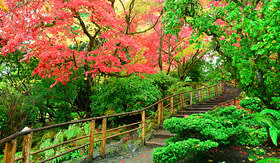 Norwegian Cruise Line japanese garden of Butchart Gardens British Columbia Canada