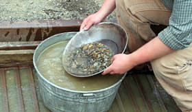 Norwegian Cruise Line panning for gold in Alaska