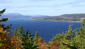 Norwegian Cruise Line view of Corner Brook Newfoundland